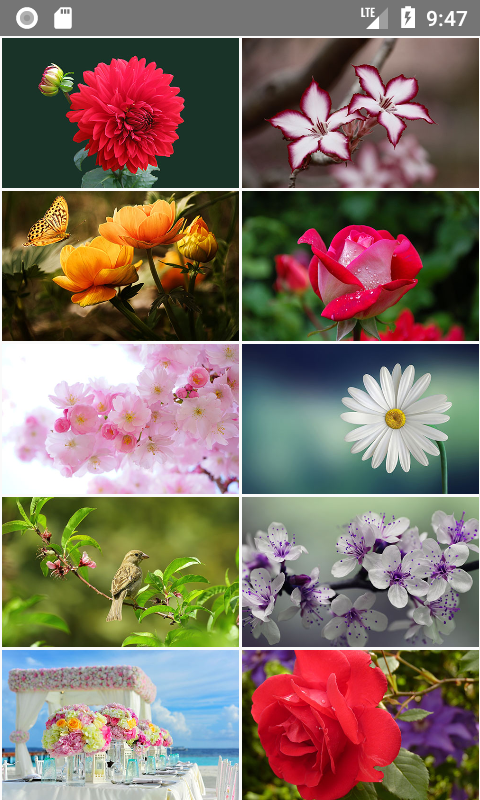 Creating Image Gallery