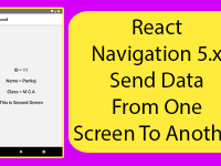 React Navigation 5.x Send Data From One Screen To Another React Native Example Tutorial