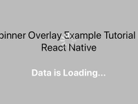 React Native Screen Overlay ActivityIndicator Progress Bar Example Tutorial