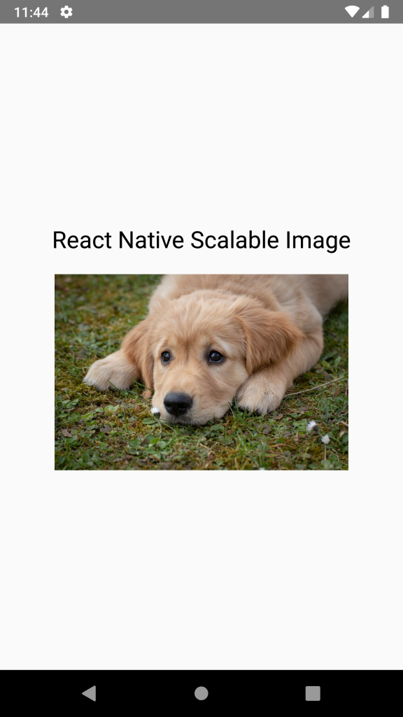 React Native Scalable Image - Android iOS Example